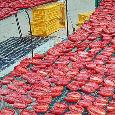 essicazione-pomodori1